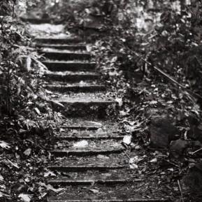Climb, Penang.